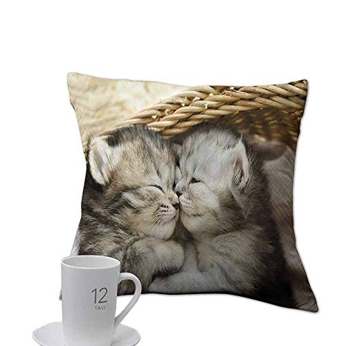 (ArrDecor Pillowcases Queen Size,Cute,Tabby Kittens in The Basket,Throw Pillows for Bed Teen Girls,W 20