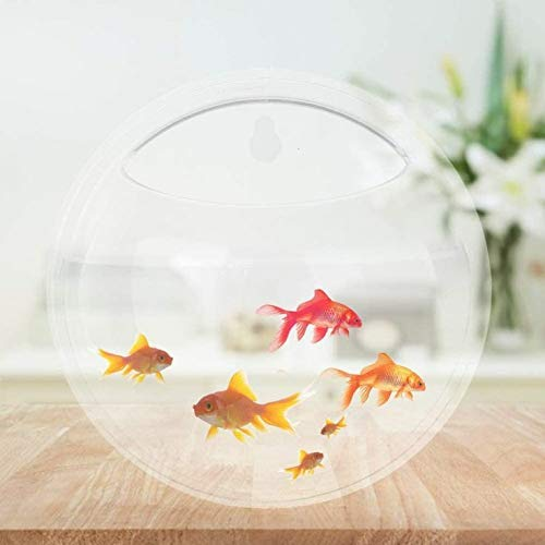 Om Home Decoration Wall Fish Tank Hanging Clear Acrylic Fish Bubble Flower Plant Pot Aquarium (8inch) Pack of 1