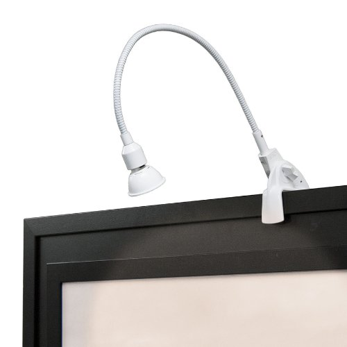 WAC Lighting DL-214-WT Display Light Low Voltage with Plug In Transformer, White (Low Voltage Art)