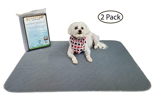 Kluein Pet Washable Pee Pads for Dogs, 2 Pack XL 34 x 36, Waterproof Reusable Puppy Pads, Fast Absorbing Wee Wee Mat; for Playpen, Housebreaking, Potty Training, Whelping, Incontinence, Travel by Kluein Pet