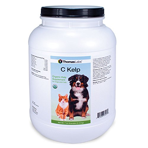 Thomas Laboratories C-Kelp Nutritional Supplement Powder, 7-Pound