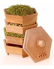 Geo TZZ0933 Terradisiena Germogliatore In Terracotta