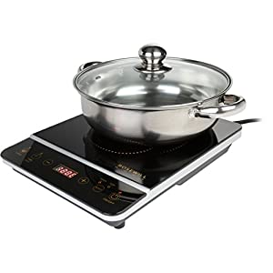 """Rosewill 1800W Induction Cooker Cooktop , Included 10"""" 3.5 Qt 18-8 Stainless Steel Pot, Gold, RHAI-16001"""