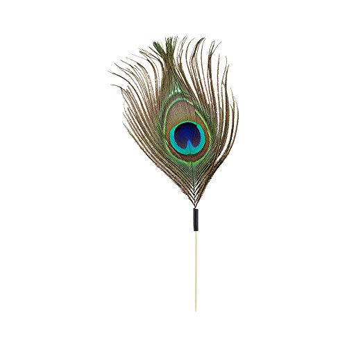 Peacock Eye Pick, Peacock Feather Skewer, Food Picks, Sticks - 6'' - Perfect for Serving Appetizers and Cocktail Garnishes - Natural Color - 1000ct - Restaurantware by Restaurantware (Image #1)
