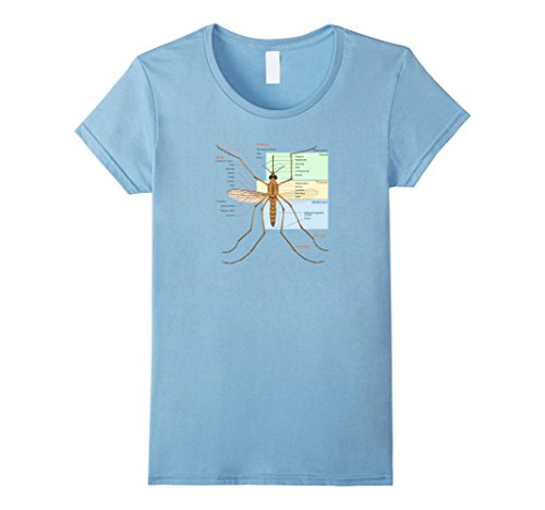 womens-mosquito-insect-fly-blood-sucking-bug-anatomy-t-shirt-tee-xl-baby-blue