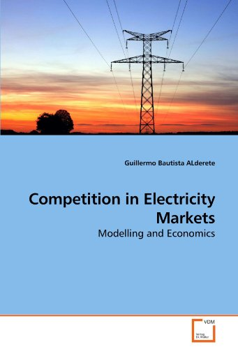 Competition in Electricity Markets: Modelling and Economics