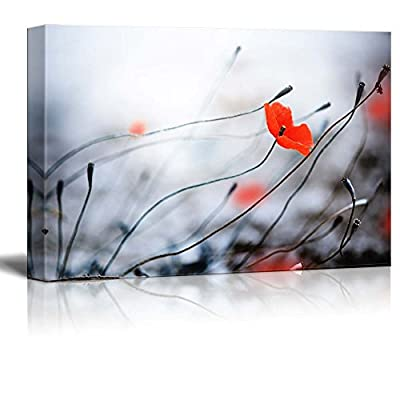 Canvas Prints Wall Art - Beautiful Flowers/Flora Poppies and Bud | Modern Wall Decor/Home Art Stretched Gallery Wraps Giclee Print & Wood Framed. Ready to Hang - 12