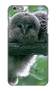 Hot Design Premium QFAGBg-3663-oWYVy Tpu Case Cover Iphone 6 Plus Protection Case (Animal Owl)