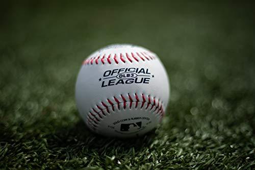 f65eaae1 Rawlings Official League Recreational Use Baseballs, Bag of 12, OLB3BAG12