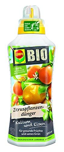 Compo 2224512004 Bio Zitruspflanzendünger, 500 ml