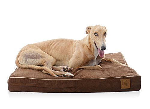 Laifug 45DHI Premium Memory Foam Orthopedic Extra Large Pet/Dog Bed (Chocolate 46