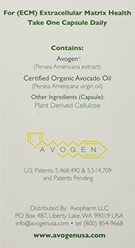 Avogen-Avocado-Dietary-Supplement60-capsules400mgcapsule