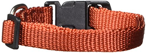 Hamilton 3/8-Inch Adjustable Dog Collar Fits 7-Inch to 12-Inch with Brushed Hardware Ring, Extra Small, Red Brick