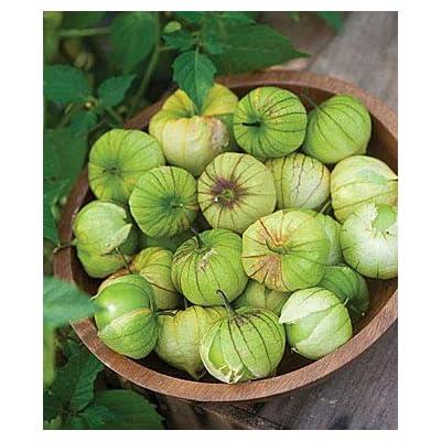 Cicitar Garden- 100pcs Rare Tomatillo, Green Organic High-yielding, Organic Vegetable Seeds Exotic Hardy Perennial Garden : Garden & Outdoor