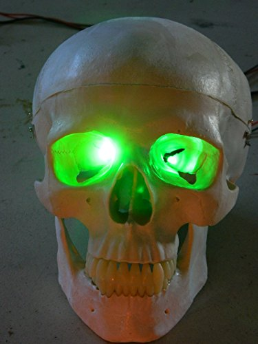 24 inch, Battery Operated, Green Led Eyes For