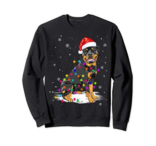 (Rottweiler With Christmas Lights Santa Hat)