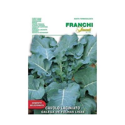 Heirloom Kale - Portuguese Smooth Leaf : Kale Plants : Garden & Outdoor