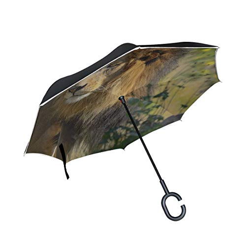 Rh Studio Inverted Umbrella Rain Sun Car Reversible Umbrella Lion Big Cat Grass Walk Large Double Layer Outdoor Upside Down Umbrella with Women with Uv Protection C-Shaped Handle