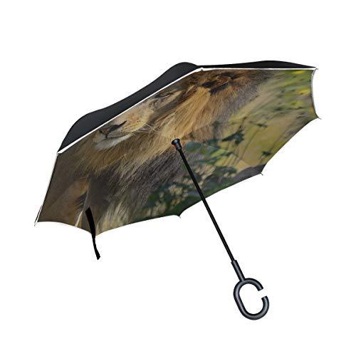 Rh Studio Inverted Umbrella Rain Sun Car Reversible Umbrella Lion Big Cat Grass Walk Large Double Layer Outdoor Upside Down Umbrella with Women with Uv Protection C-Shaped Handle (1690 Double Handle)