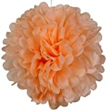 Tissue Pom Pom Paper Flower Ball 20inch Peach (4 PACK) -Just Artifacts Brand