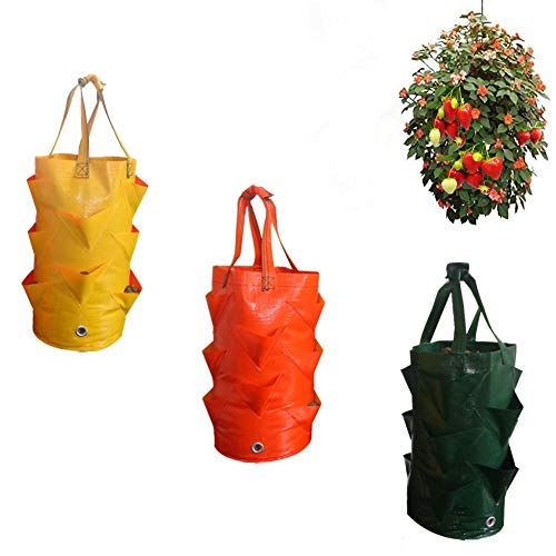(SuperThinker 3 Pack Gardens Hanging Planter Growing Bag with Handles Wall Planter Pouch for Strawberry Bare Root Plants, Herbs, Flowers Home Decoration (3pack))