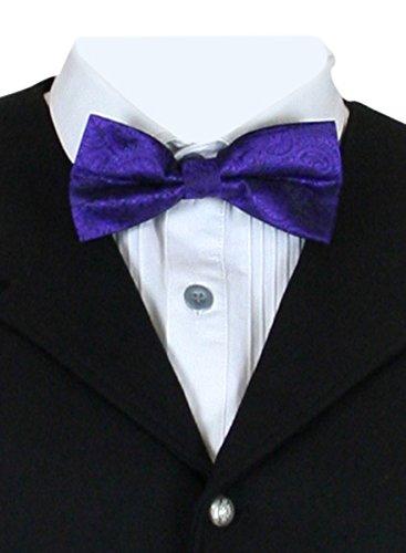 Paisley Abbey Halloween (Historical Emporium Men's Montgomery Paisley Bow Tie)