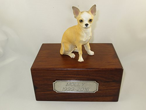 (Conversation Concepts Beautiful Paulownia Small Wooden Urn with White & Tan Chihuahua Figurine & Personalized Pewter Engraving)