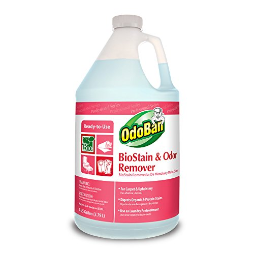 odoban-960062-g-biostain-and-odor-remover-ready-to-use-128-oz