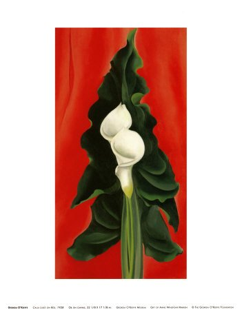 Georgia Okeeffe Calla Lily - Calla Lilies on Red, 1928 Art Poster Print by Georgia O'Keeffe, 11x14
