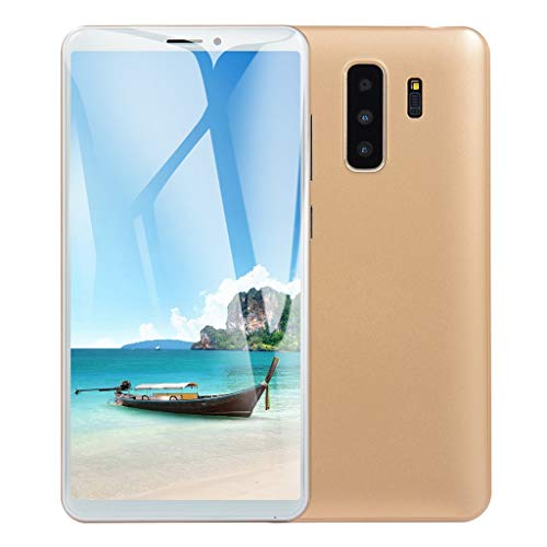 Full Screen Unlocked Smartphone - 5.8 Inch Android HD Display Dual SIM/Camera Cellphone - 3G WiFi 1G RAM+4G ROM Mobile Phone (Gold, 5.8 Inch)