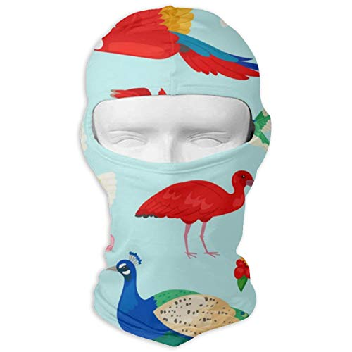 - JJKYL Tropical Birds Exotic Parrot Or Flamingo Vector Image Full Face Mask Hood Sunscreen Mask Cycling Hunting Hiking Skiing Mask Dual Layer Cold for Men and Women