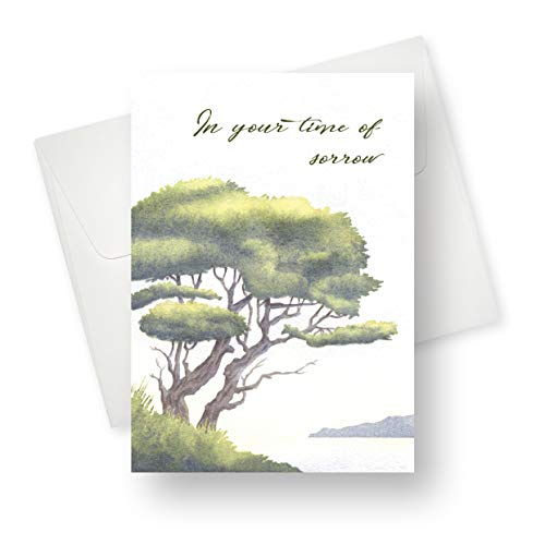 (12 Pack) Time of Sorrow Sympathy Greeting Card - Premium Quality with Unique Designs - for Men, Women, Adults - 5.5