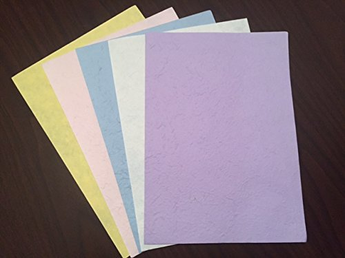 100 Sheets! 5 Different Pastel Colors of Mulberry Paper (8 1/2 X 12