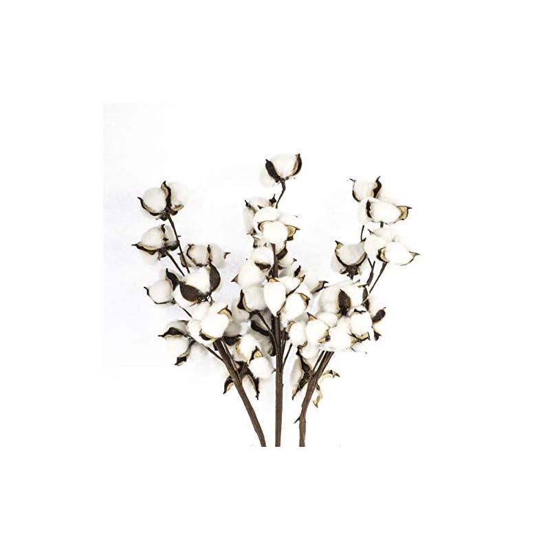 silk flower arrangements antea decor cotton stems 6 pack - rustic cotton flowers - perfect for farmhouse spring decor - 10 balls per stem - 21 inches