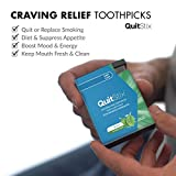 Craving Relief Toothpicks with Activating Tingle to