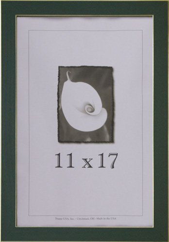 Amazon.com - 11x17 Green Picture Frame with Clean Cut Edge - Single ...