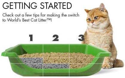 best clumping cat litter consumer report