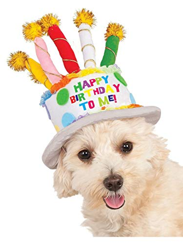 Birthday Cake Hat for Pet, -