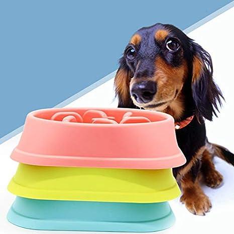 JUNGEN Comedero para Mascotasc Alimentador Lento Cuenco Antideslizante Cuenco de pl/ástico para Perro Gato 20.3 Verde 4.6cm