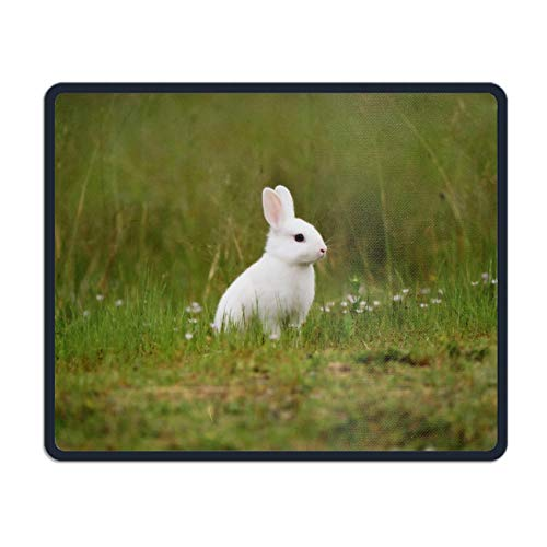 Lovely Best Rabbit Customized Non-Slip Rubber Mousepad Gaming Office Mouse Pad ()