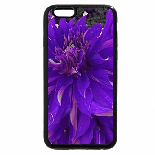 iPhone 6S / iPhone 6 Case (Black) FOR PURPLE-HAZE