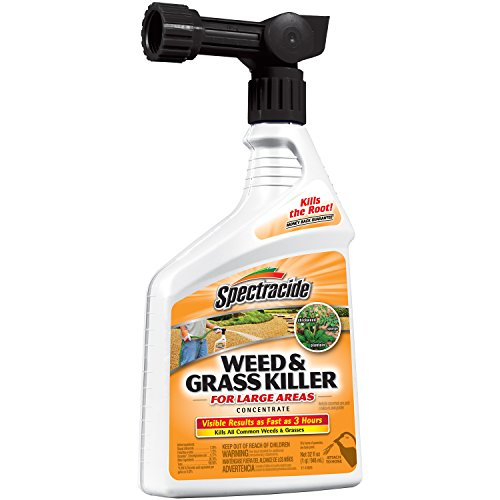Spectracide 96024 Weed and Grass Killer Concentrate, Ready-to-Spray, 32-Ounce, Pack of 1 (Spectracide Weed And Grass Killer)