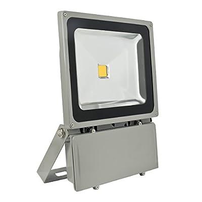 Eyourlife 100W LED Flood Lights Waterproof Outdoor Lamp