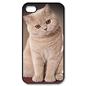 AKERCY British Shorthair Cat Phone Case For Iphone 4/4s [Pattern-1]