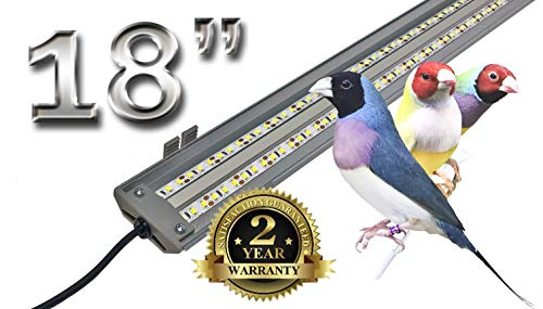 Led Lighting For Bird Cages
