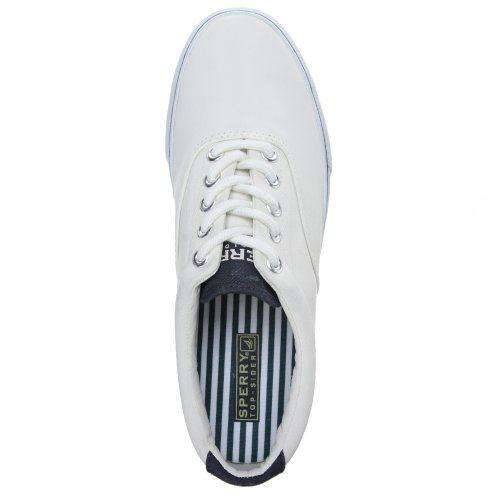 mode CVO Homme STRIPER Sperry White Baskets U1nI1xR