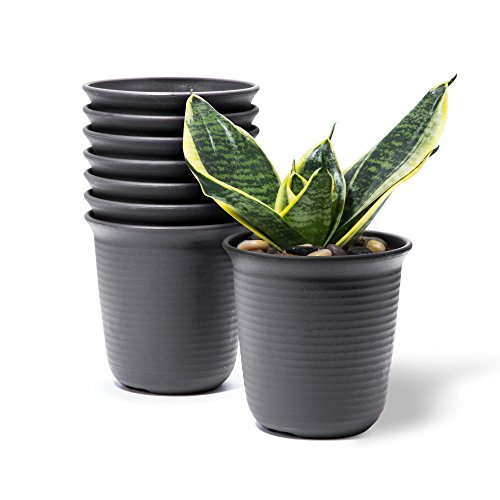 10-Packs 4.6Inch Plastic Plants Flower Seedling Nursery Pot Brown Seed Starting Pots - Light Weight - Washable - Rusable Cactus Succulent Plant Pot Container Planter by Goldblue (Image #5)
