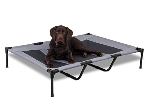 BIRDROCK HOME Internet's Best Dog Cot - 48 x 36 - Elevated Dog Bed - Cool Breathable Mesh - Indoor or Outdoor Use - Large - Grey (Best Outdoor Dog Bed)