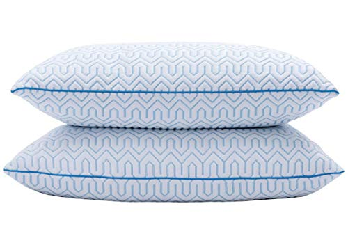 puredown Natural White Goose Down Feather Cool-Down Pillow with Cooling Ice Silk Cover,Set of 2, -