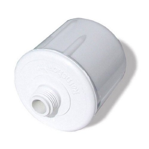 Cameo-RS Dechlorinating Shower Filter System